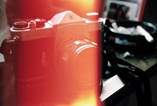 light leak photography inspiration