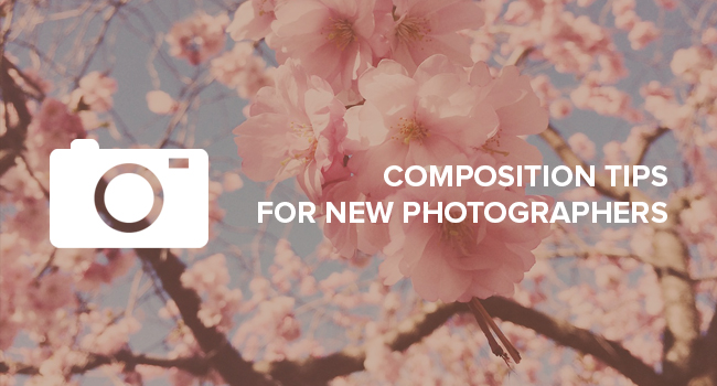 Basic Photography Composition Tips for New Photographers