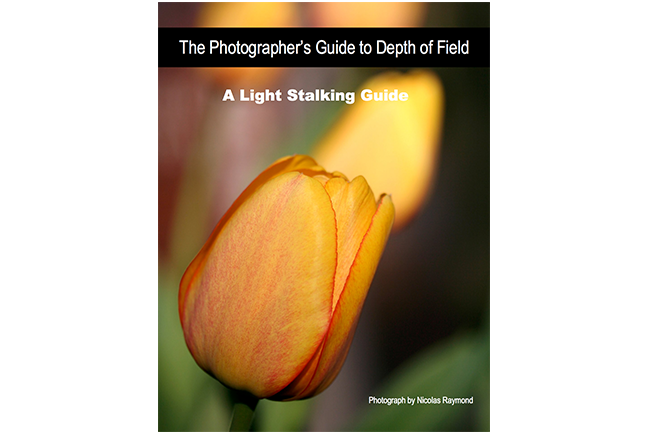 The Photographer's Guide to Depth of Field