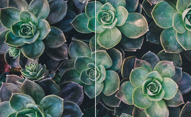 free pastel lightroom preset effect