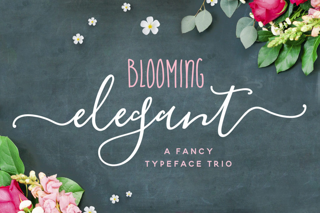 Blooming Elegant Font Trio from Nicky Laatz