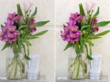 still life photo editing lightroom