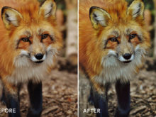 amazing hdr photo filters