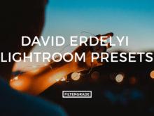 David Erdelyi Lightroom Presets