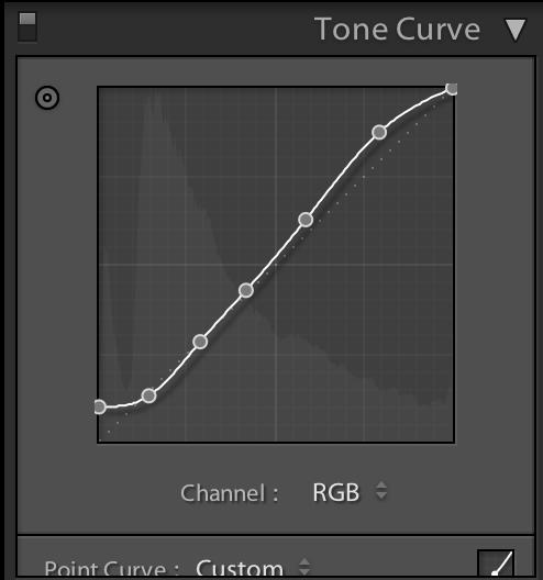 tone curve adjustment in adobe lightroom
