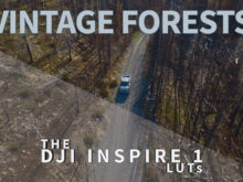 vintage forests video luts by neumann films