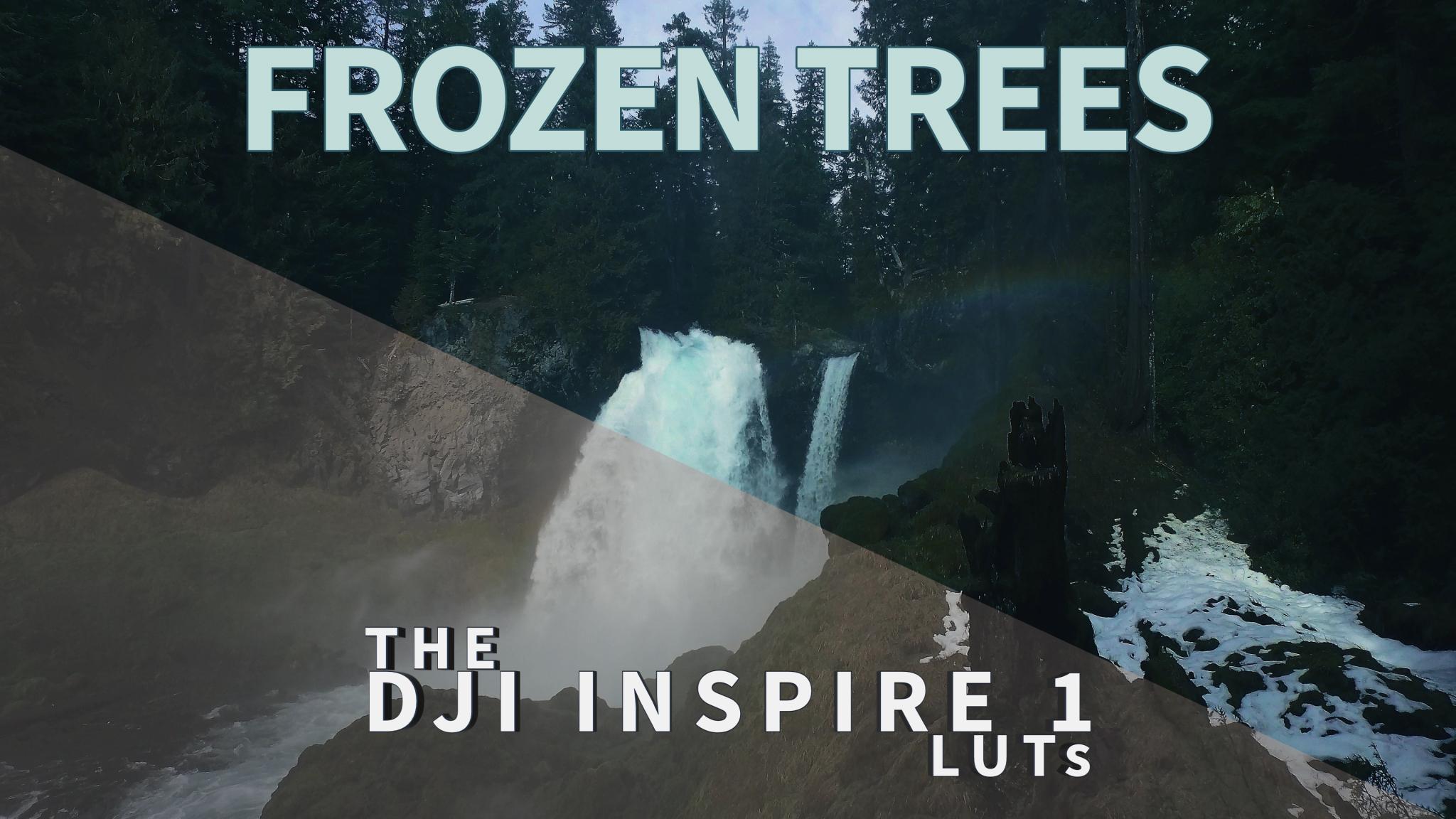 frozen trees cinematic video luts