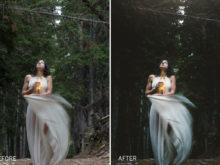 Fairy Lightroom Presets