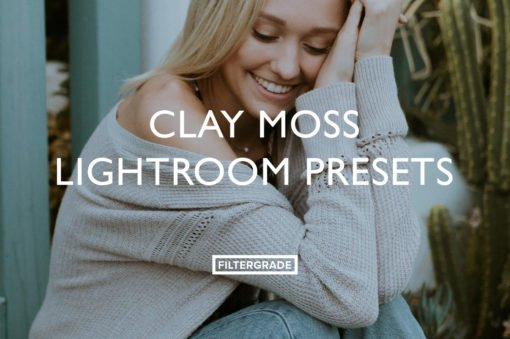 Clay Moss Lightroom Presets
