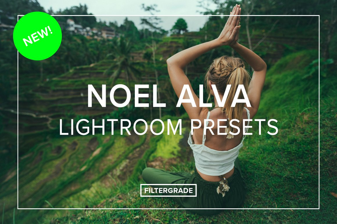 NEW Noel Alva Lightroom Presets