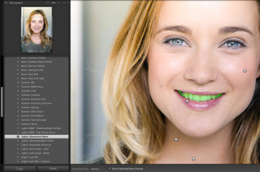photoserge lightroom brushes by serge ramelli
