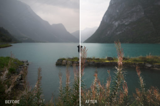 natural lr presets from victor bergstedt