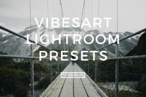 Vibesart Lightroom Presets for street photographers.