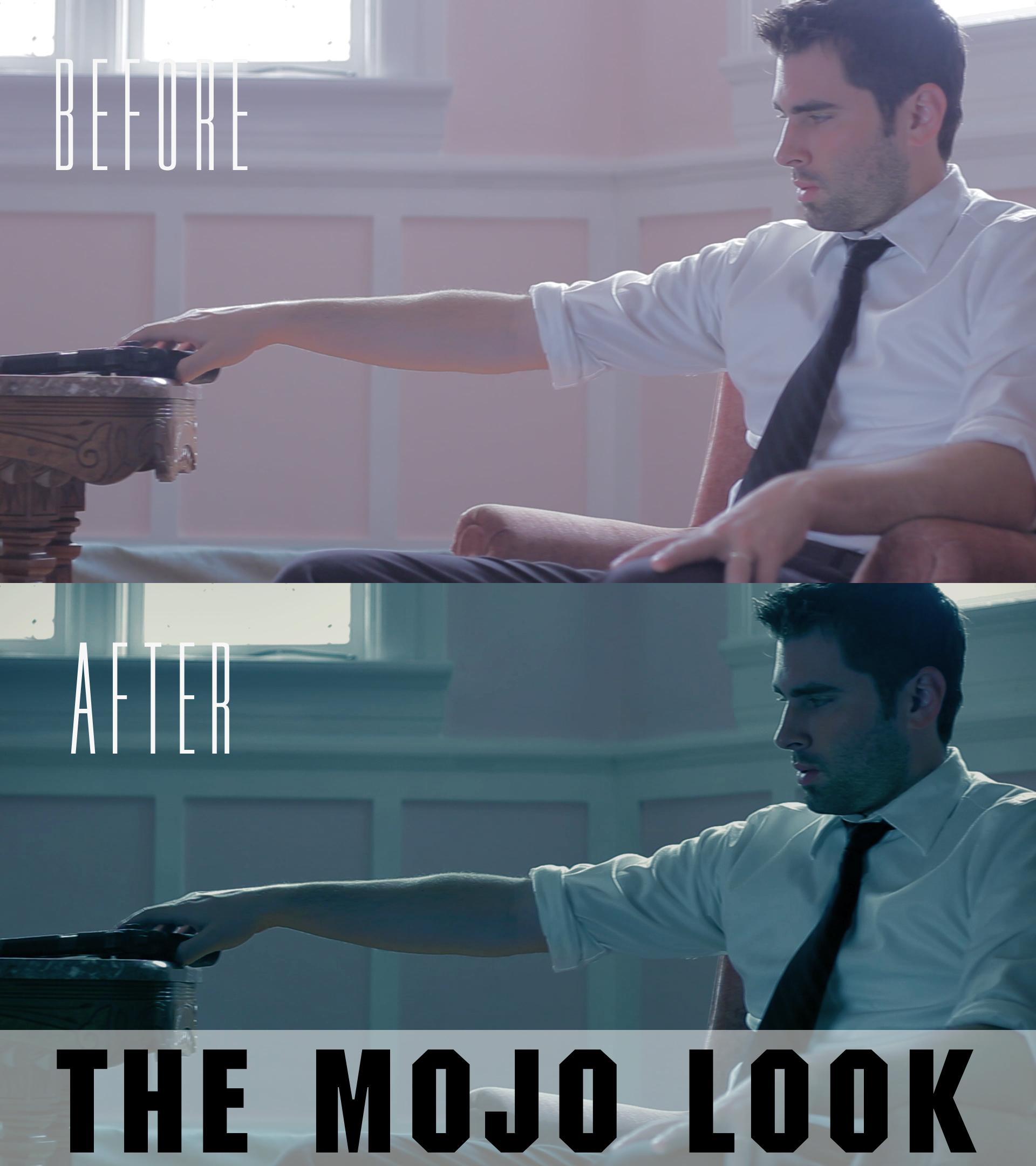 mojo look premiere pro presets