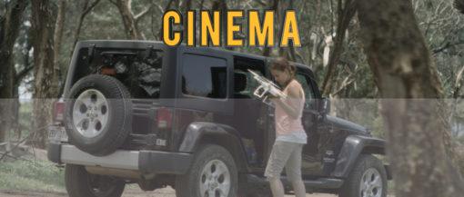 cinema luts