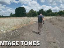 vintage tones video luts