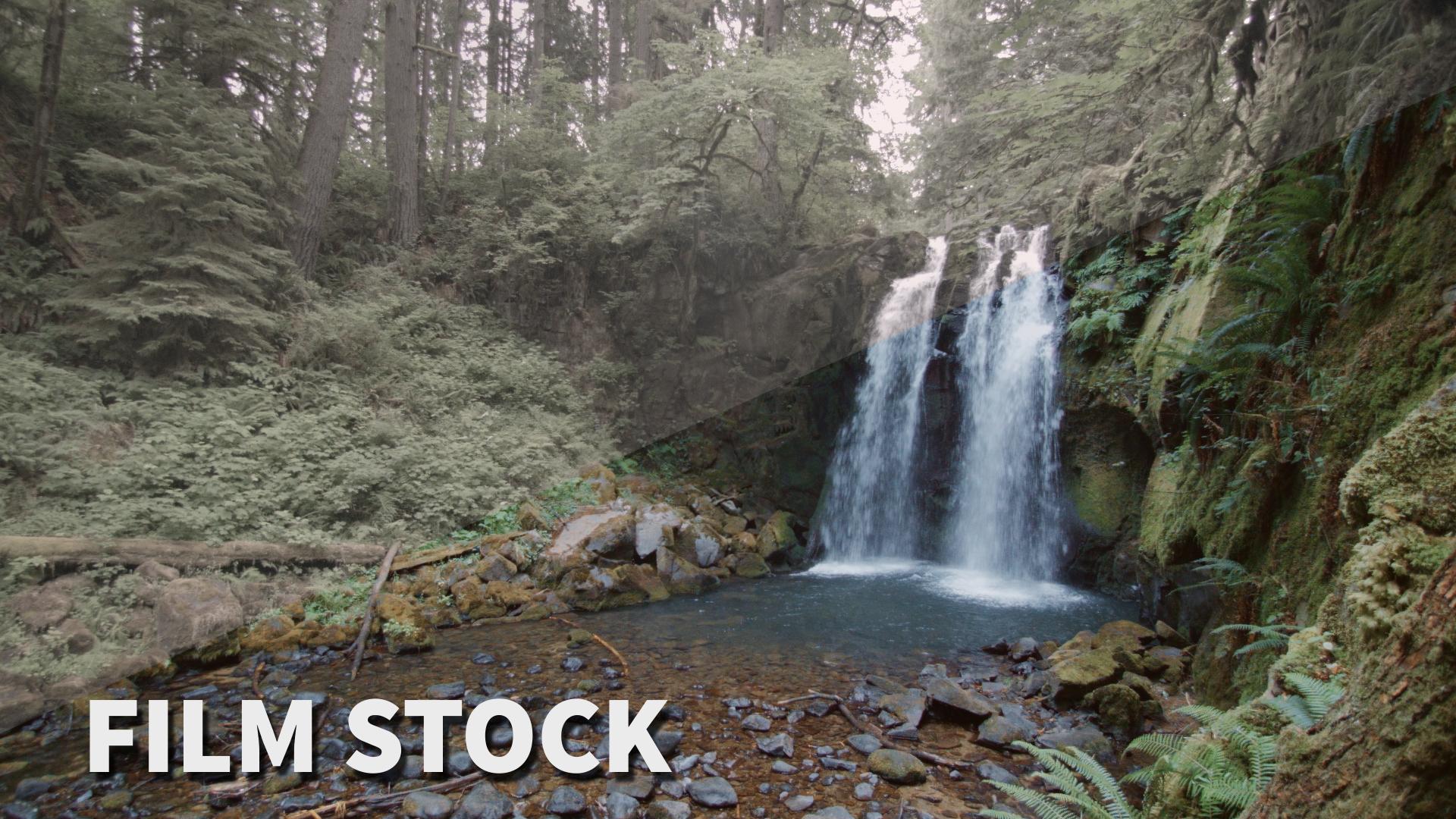 film stock black magic pocket cinema camera luts