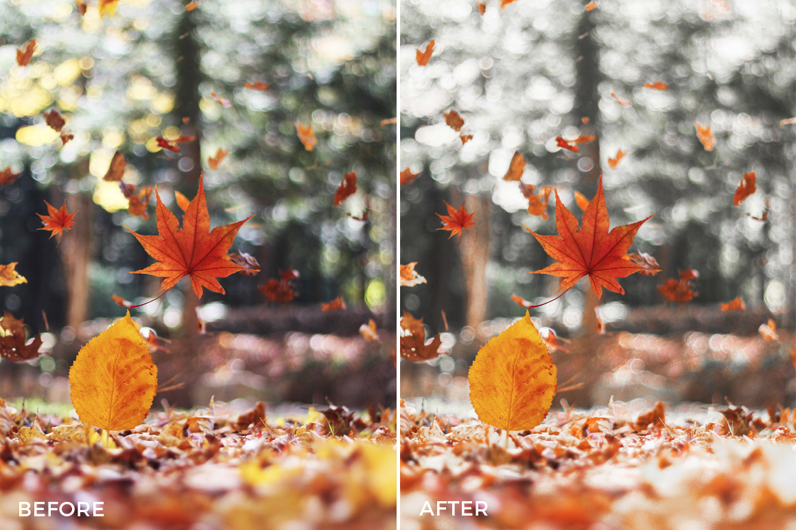 fall lightroom presets