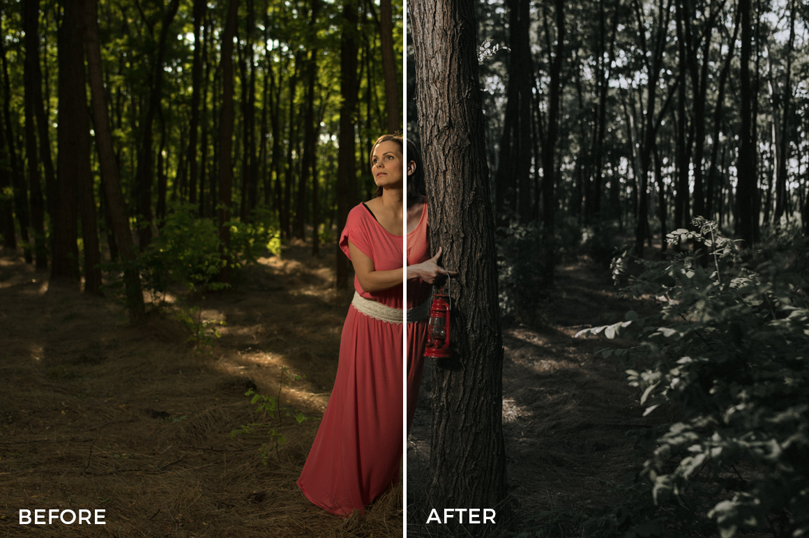 1 Marcell Faber Lightroom Presets - FilterGrade Marketplace