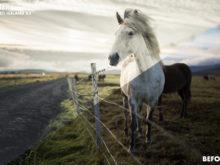3 Basti Hansen Iceland X Lightroom Presets - FilterGrade Marketplace