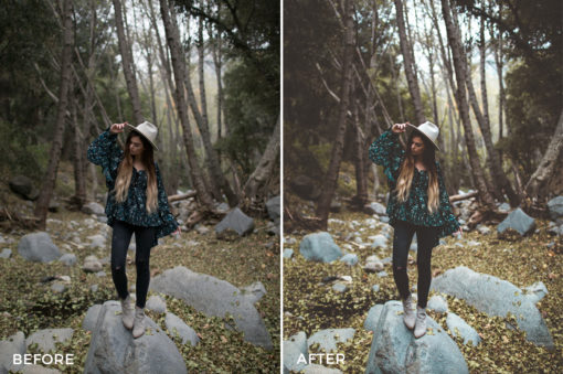 3 Alexandra Ford Lightroom Presets - FilterGrade Marketplace