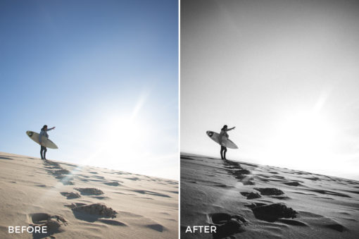 1 Theo Ox New Vision Lightroom Presets - FilterGrade Marketplace