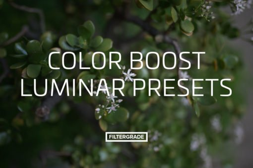 Color Boost Luminar Presets from FilterGrade