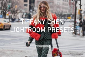 Tiffany Chen Lightroom Presets - FilterGrade