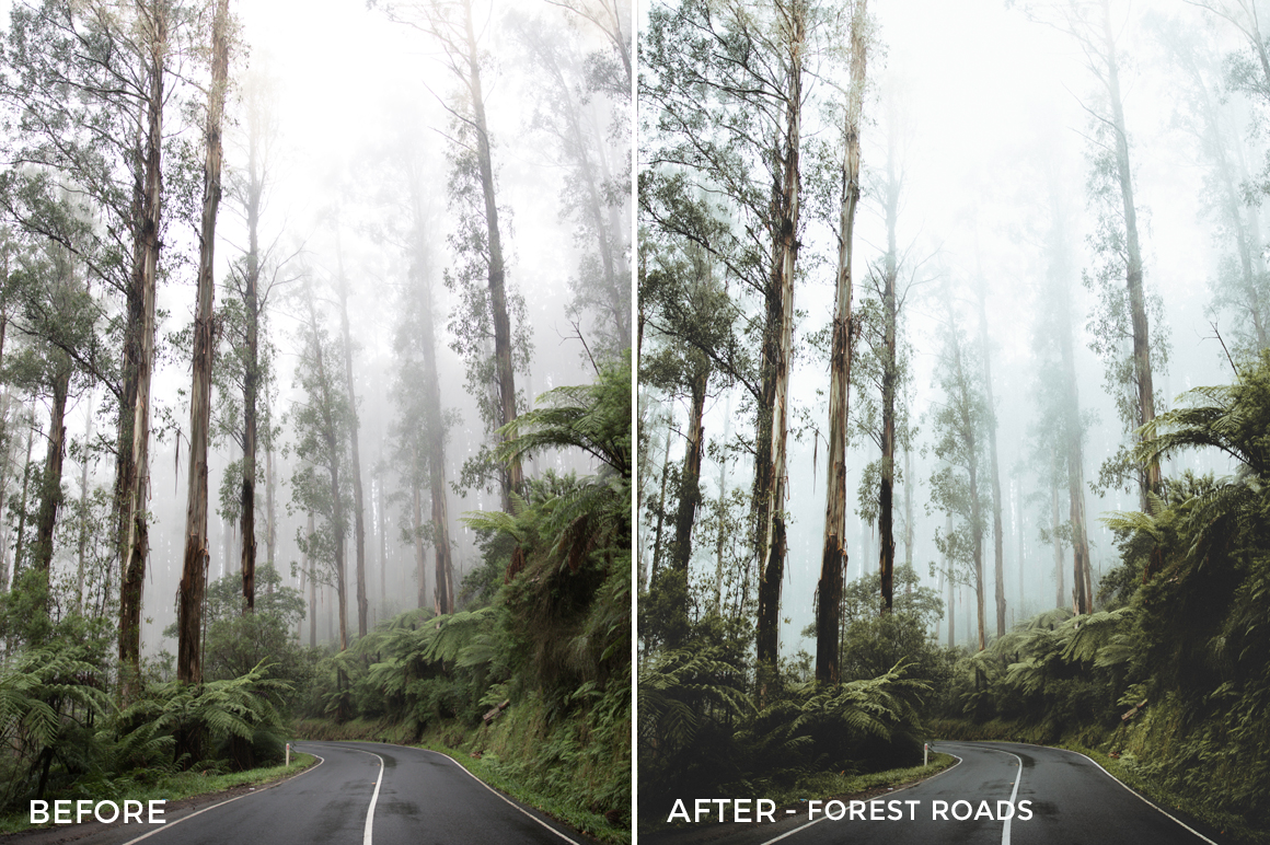 4 Forest Roads - Kirk Richards Lightroom Presets - @kirkjrichards - FilterGrade Digital Marketplace