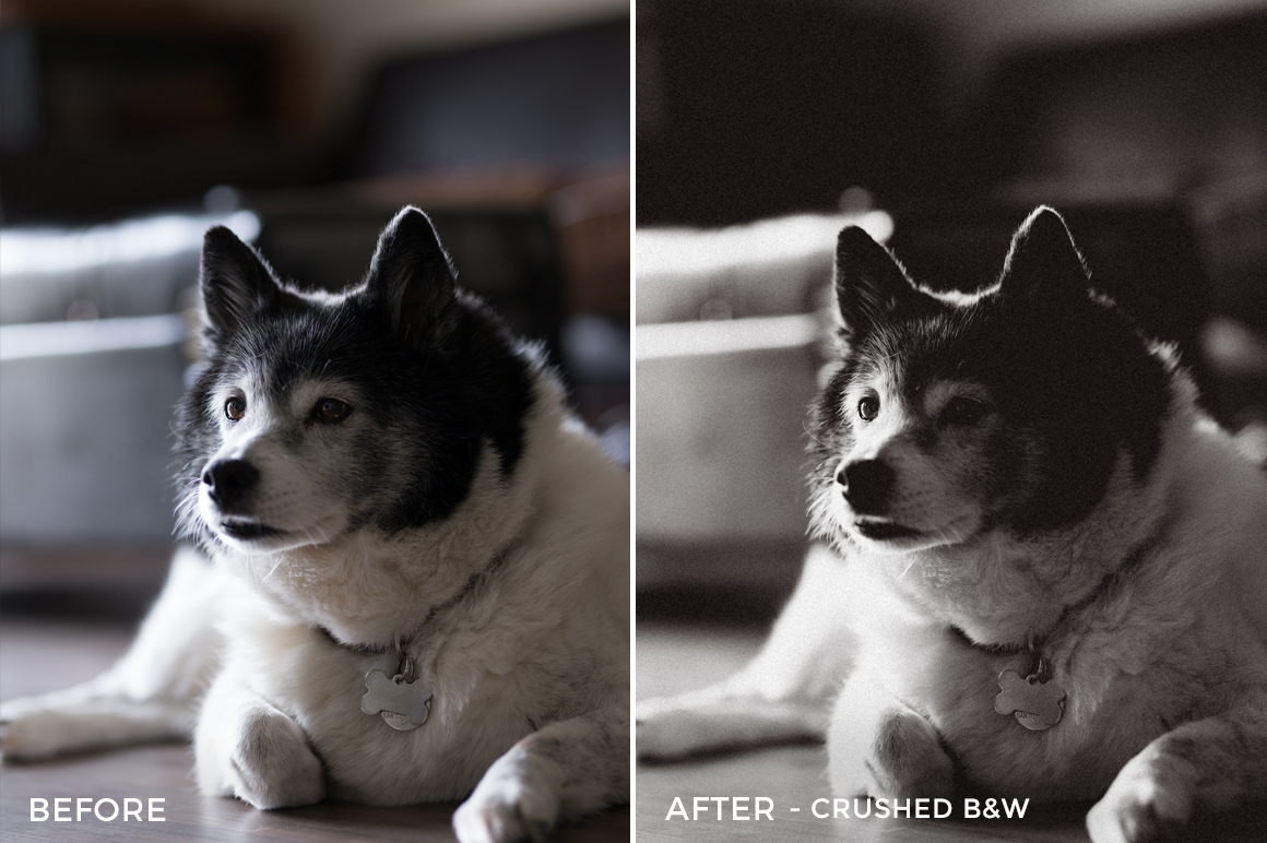 2 Crushed B&W - Becca Ruski Lightroom Presets - Becca Ruski - FilterGrade Digital Marketplace