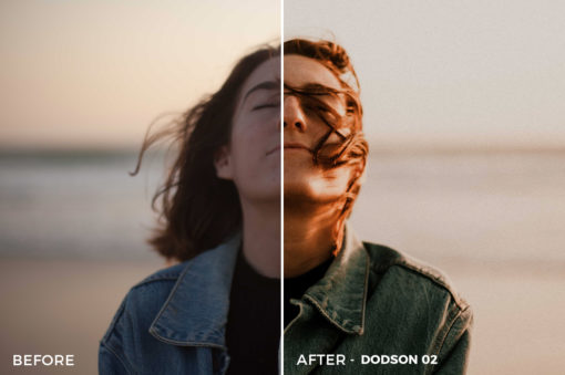 2 Ryan Dodson Vintage Lightroom Presets - FilterGrade Marketplace