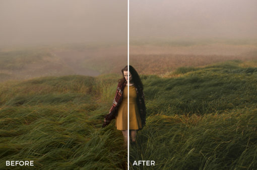 4 Patrick Pfaff Lightroom Presets - FilterGrade Digital Marketplace
