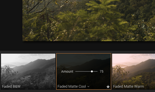fade luminar preset effect for photo editing