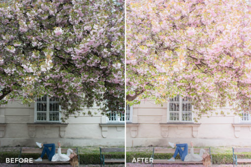 3 Simone Moelle Dreamy Wanderlust Lightroom Presets - FilterGrade Digital Marketplace