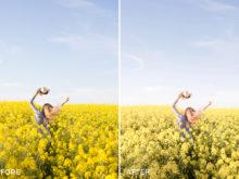 2 Simone Moelle Dreamy Wanderlust Lightroom Presets - FilterGrade Digital Marketplace