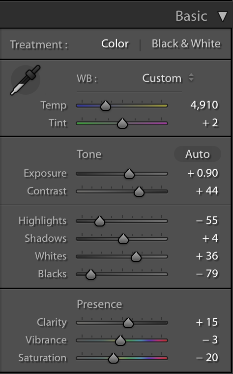 Basic Settings Adjustment - Tips and Tricks for Using FilterGrade Presets