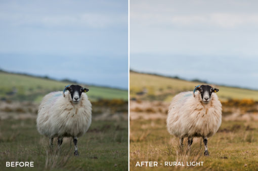 9 Rural Light - Wayne Farrell Lightroom Presets - Wayne farrell Photography - Filtergrade Digital Marketplace