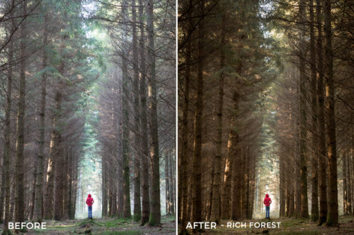 8 Rich Forest - Wayne Farrell Lightroom Presets - Wayne farrell Photography - Filtergrade Digital Marketplace