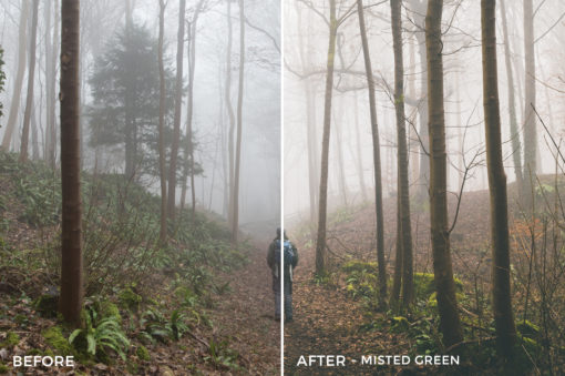 7 Misted Green - Wayne Farrell Lightroom Presets - Wayne farrell Photography - Filtergrade Digital Marketplace