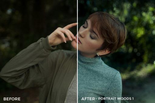 7 Portrait Moods 1 - TJ Drysdale Lightroom Presets - TJ Drysdale Nature & Portrait Photography - FilterGrade Digital Marketplace