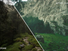 5 Film 2 - TJ Drysdale Lightroom Presets - TJ Drysdale Nature & Portrait Photography - FilterGrade Digital Marketplace