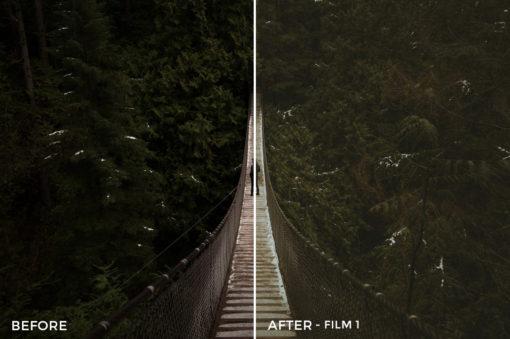 4 Film 1 - TJ Drysdale Lightroom Presets - TJ Drysdale Nature & Portrait Photography - FilterGrade Digital Marketplace