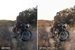 14 Willow - Speedy Donahue Zephyr Pack Lightroom Presets- Sean Donahue Photography - FilterGrade Digital Marketplace