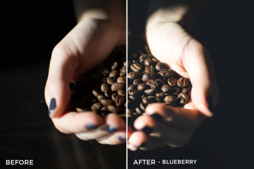 5 blueberry - Foodies Feed Lightroom Presets - Foodies Feed Blog - FilterGrade Digital Marketplace