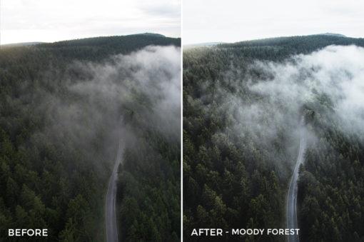 5 Moody Forest- Marcel Heller Lightroom Presets - Marcel Heller Photography - FilterGrade Digital Marketplace