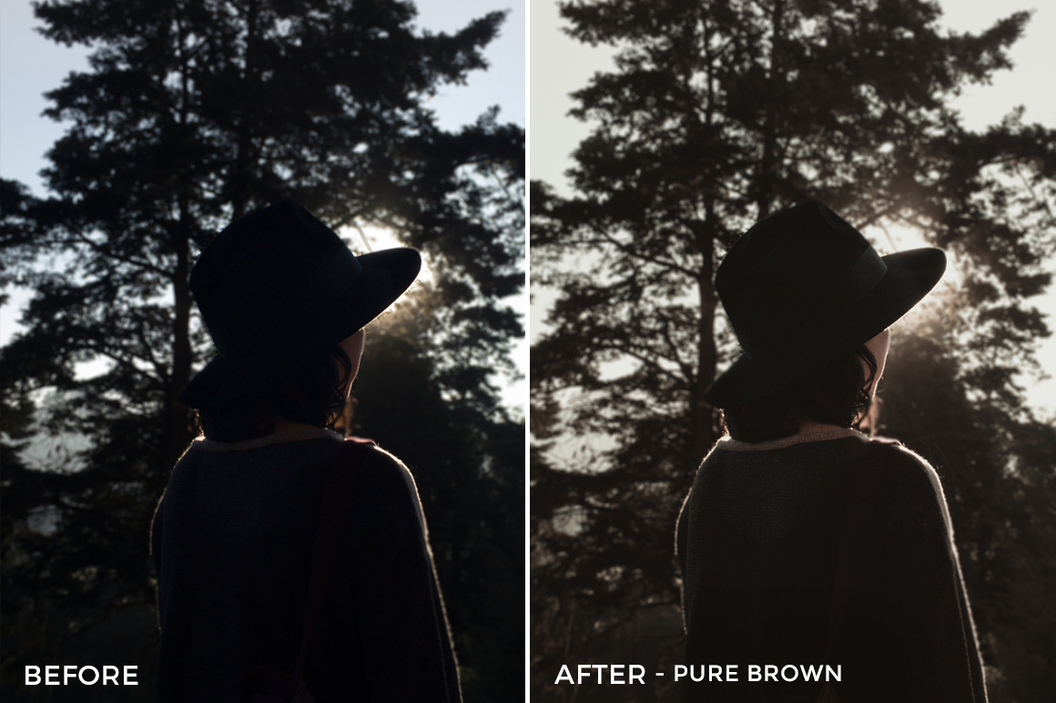 9 Pure Brown- Colorgrader Lightroom Presets - @colorgrader - FilterGrade Digital Marketplace