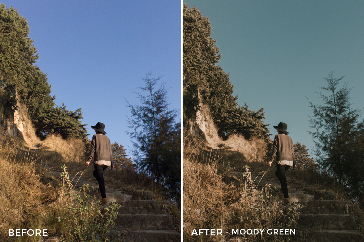 8 Moody green- Colorgrader Lightroom Presets - @colorgrader - FilterGrade Digital Marketplace