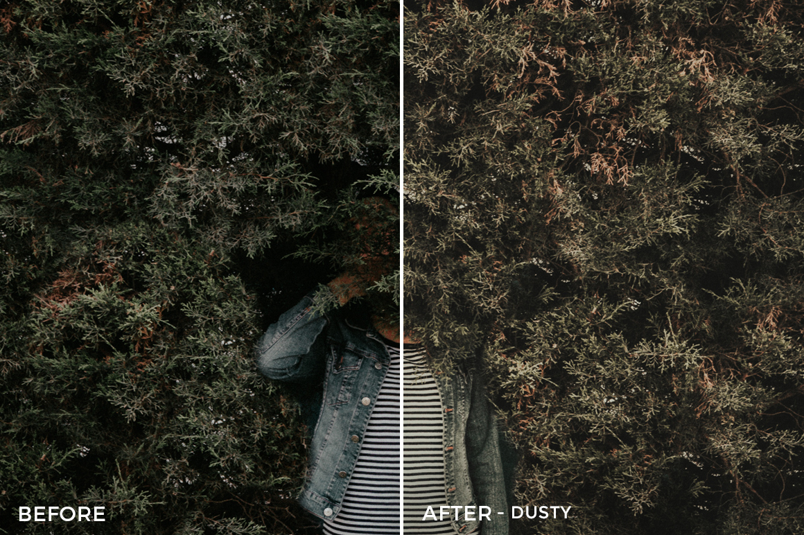 4 Dusty- Colorgrader Lightroom Presets - @colorgrader - FilterGrade Digital Marketplace