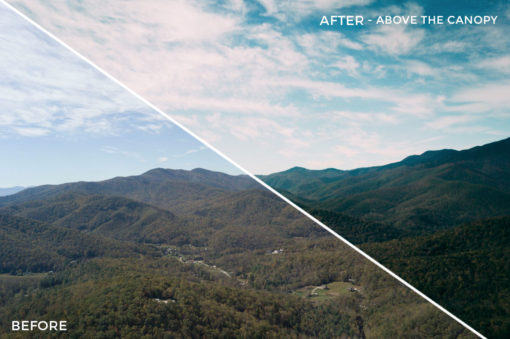 Above the Canopy - Kal Visuals Landscape Lightroom Presets II - FilterGrade