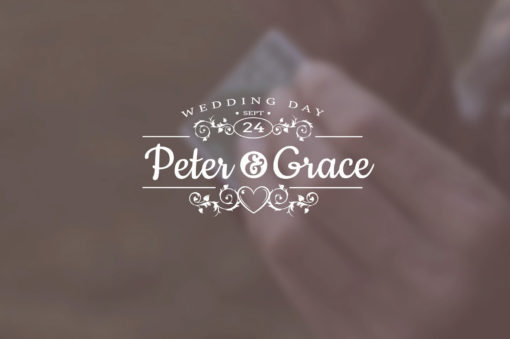 wedding titles after effects video